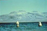 mysterious, beautiful Mono Lake, California