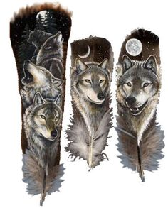 fave animal wolves
