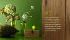 vignette featuring various green products.
