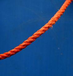 minimal orange and blue