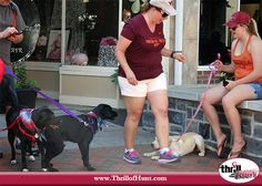 Thrill of the Hunt hosted the 2nd Annual Dog Scavenger Hunt in Old Town Winchester, Virginia, sponsored by Dancing Dog Natural Market. (Other Sponsors: Shannon Hodges Photography, Sammy Snacks by Ancestry, Gun Dog Supply) #ThrillofHunt #ScavengerHunt 5/28/16