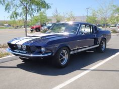 1967 MUSTANG SHELBY GT 500 This is my ultimate dream car! Same make and model but gray.