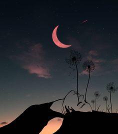 """7,120 Me gusta, 48 comentarios - Abdullah Evindar (@abdullah_evindar) en Instagram: """"Sahi sen hiç Lili'yi uyurken uzun uzun seyrettin mi? İnsan sevdiğinin uykusu olmak istiyor bazen. .…"""" Night Photos, Fantasy Art, Northern Lights, Moon, Celestial, Nature, Travel, Outdoor, Instagram"""