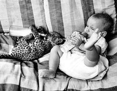 baby and a baby leopard drinking a bottle...adorable!!