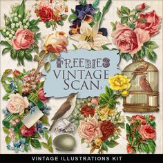 Far Far Hill - Free database of digital illustrations and papers: Freebies Vintage Flowers Illustrations