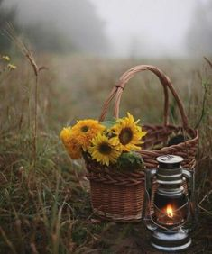 Fall Pictures, Nature Pictures, Beautiful Pictures, Old Lanterns, Vintage Lanterns, Wallpaper Nature Flowers, Flower Wallpaper, Fantasy Photography, Nature Photography