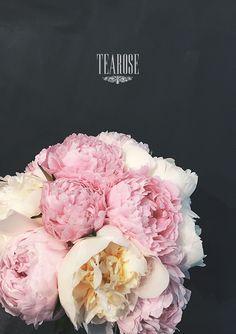 Menyasszonyi csokor pünkösdi rózsából