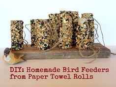 homemade bird feeders with paper towel rolls