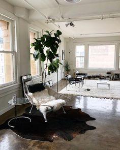 m File   Minimal modern living room