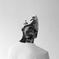 Photomanipulation by Matt Wisniewski