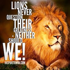 Nobody else's opinion of you should have the power to take you out! The GREATNESS inside of you is ready and prepared for new levels of success! Unleash the LION within... It's Your Time!   InspireToWin.com
