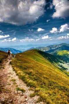 Low Tatras National Park (Slovak: Národný park Nízke Tatry; abbr. NAPANT)