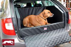Seat Ibiza 5-türer und 3-türer (sc) - DOG AUTOBETT Kofferraumschutz Schondecke und Transportbox ade