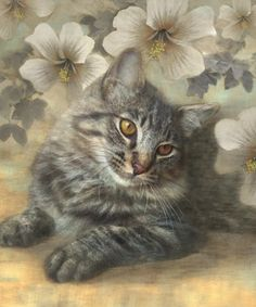 Maine Coon Cat and White Floral