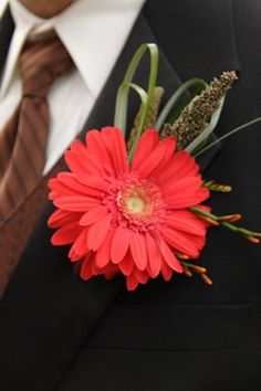 This Gerbera buttonhole would only last a couple of hours, especially on a hot day, but it's rather fabulous all the same! Loved by Jemini Flowers, Oxford - www.jemini.co.uk