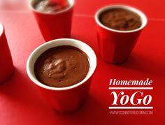 Homemade Chocolate Yogo