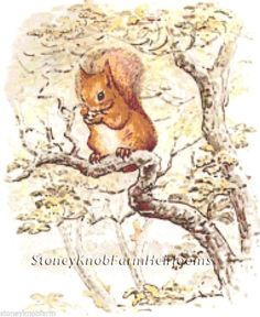 Tale of Squirrel Nutkin ~ Beatrix Potter ~ Counted Cross Stitch Pattern #StoneyKnobFarmHeirlooms #CountedCrossStitch