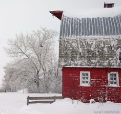 Winterizing the farm: your home, barn, livestock and equipment with this advice. Come the first storm of the season, and you'll be glad you did