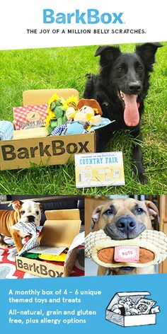Get a free extra month of BarkBox! To redeem, click through this pin and sign up for a 6 or 12 month plan (offer ends 9/16/16). BarkBox delivers a monthly themed box of curated all-natural doggy treats and fun toys to your door. It's a pawsome experience for you and your pup. Plans can be customized for big or small dogs, heavy chewers, and pups with allergies. Most of all, it just makes dogs happy.