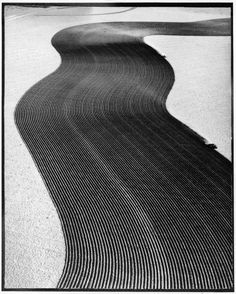 "Aerial view of two tractors in field plowing trench-like furrows in methods called ""listing"" to counteract wind and ""contouring"" furrows plowed at right angles to the slopes to hold any rain, in order to save top soil against the ravages of dust storms. Margaret Bourke-White"