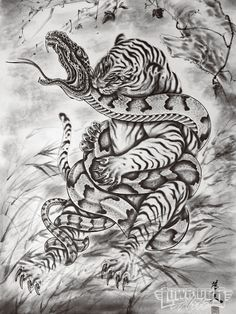 japanese art snake vs tiger | Tattoo Artist Horiyoshi Iii Tiger And Snake Photo 4