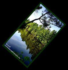 Carolinamoonphotography.com