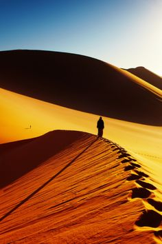 The Sahara Desert is the world's largest hot desert with temperatures of over 40˚C in the summer months! #Sahara