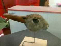 rabbit or malard ?