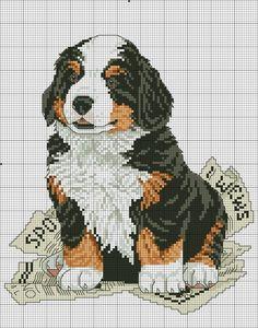 Найкращі схеми вишивок Cross Stitch Owl, Cross Stitch Boards, Cross Stitch Animals, Cross Stitch Designs, Cross Stitching, Cross Stitch Embroidery, Cross Stitch Patterns, French Bulldog Art, Dog Crafts