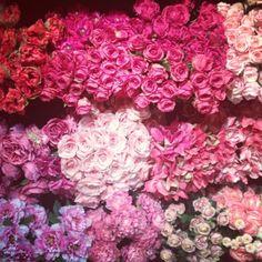 wedding flowers -- def LOVE the feminine colors!