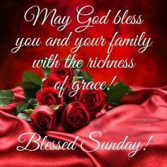 Blessed Sunday Morning, Blessed Sunday Quotes, Sunday Prayer, Sunday Morning Quotes, Sunday Wishes, Morning Images, Morning Thoughts, Good Evening Greetings, Sunday Greetings