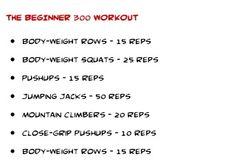 Beginner 300 workout