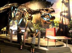 1000 images about ohio family fun on pinterest ohio Dinosaur museum ohio