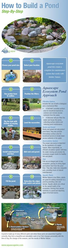 Infographic - Aquascape Ecosystem Pond Installation