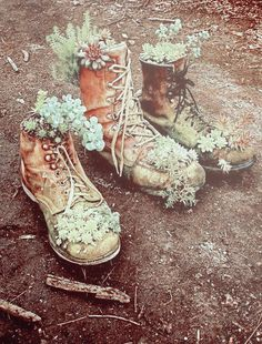 Hens & Chicks in old boots  - brings back memories of my great aunt's garden <3