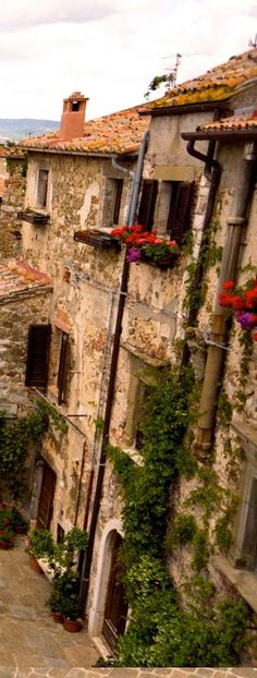Montemerano - Tuscany | Italy