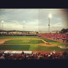 University of South Carolina Baseball
