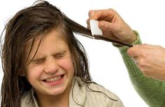How to get rid of head lice? Natural ways to get rid of head lice. Remedies to kill head lice. Top ways to treat head lice naturally.