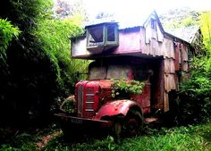 The Flying Tortoise: These Wonderful Old Housetrucks Can Only Dream About The Road Less Travelled...