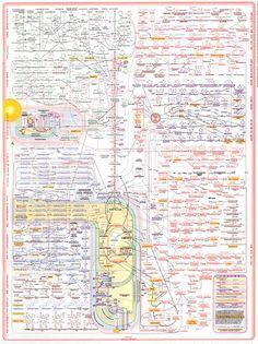 metabolic pathway