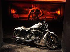 2015 Harley Davidson Iron 883