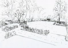Praca Szkic ASHTEAD ogrodzie Lisa Cox wzory