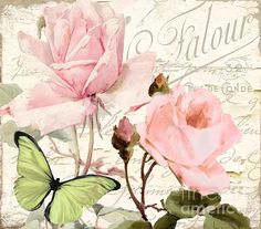 Florabella IIi Print by Mindy Sommers