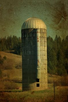 Silo - this looks exactly like the silo my dad had on our farm!!