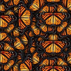Orange Monarch Wings Fabric - Heaps Of Orange Monarch Butterflies By Bonnie Phantasm - Orange Cotton Fabric By The Metre With Spoonflower