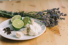 Přírodní odpuzovače hmyzu – Tchibo Health Fitness, Cooking, Healthy, Ethnic Recipes, Bonsai, Food, Plants, Household, Kitchen
