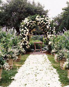 Hosted in the backyard of a family home, this formal New York wedding included a white-petaled walkway as the aisle. Other floral details—including an English rose-covered arbor and overgrown blooms—made the celebration even dreamier.