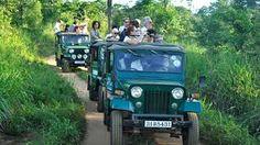 Image result for wild safari picture sri lanka Sri Lanka, Antique Cars, Safari, Antiques, Pictures, Image, Vintage Cars, Antiquities, Photos