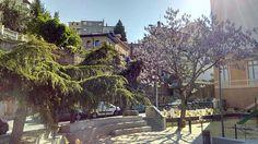 Appartement, 23.82 m² T-2 à acheter à Caluire-et-Cuire pour 89000 € avec ORPI