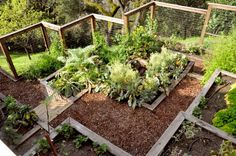 Backyard. Build boxes and interlock them into place to create a set of raised beds on the hill